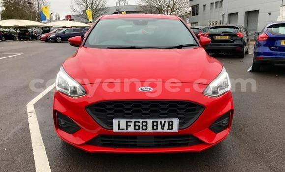 Buy Used Ford Focus Red Car in Aranos in Hardap