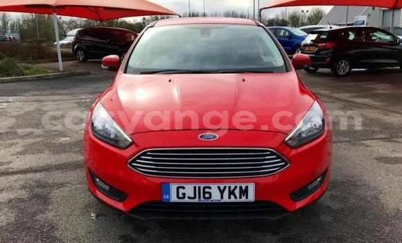 Buy Used Ford Focus Red Car in Walvis Bay in Namibia