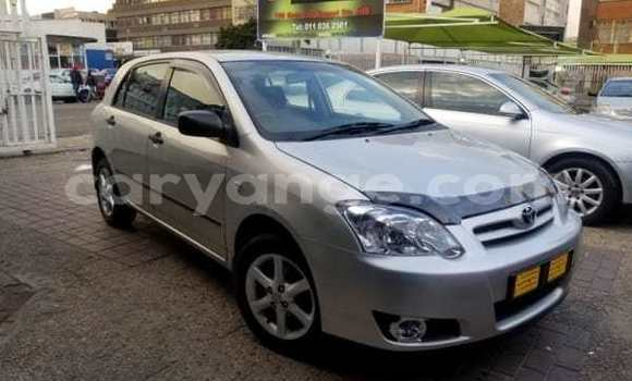 Buy Used Toyota Runx Silver Car in Rundu in Namibia