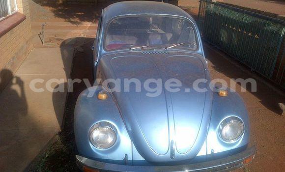 Buy Used Volkswagen Beetle Black Car in Windhoek in Namibia