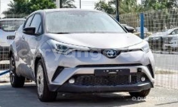 Buy Import Toyota C-HR Other Car in Import - Dubai in Namibia