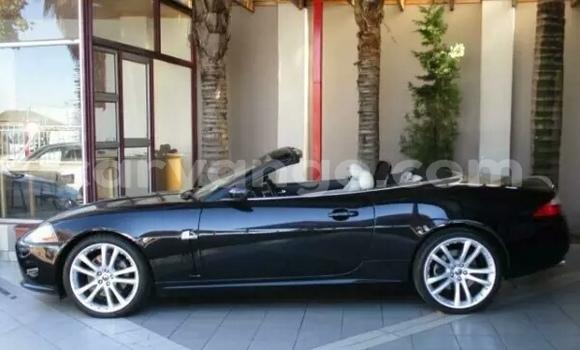 Buy Used Jaguar XK Black Car in Walvis Bay in Namibia