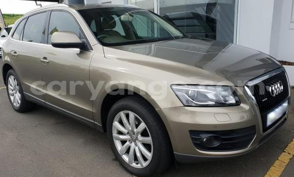 Buy Used Audi Q5 Beige Car in Windhoek in Namibia