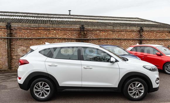 Buy Used Hyundai Tucson White Car in Windhoek in Namibia