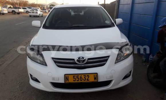 Buy Used Toyota Corolla Black Car in Windhoek in Namibia