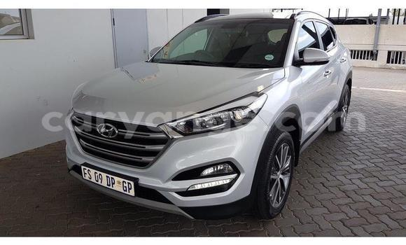 Buy Used Hyundai Tucson Silver Car in Swakopmund in Namibia