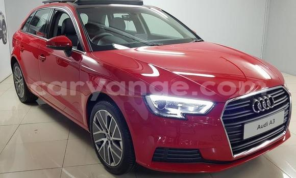 Buy Used Audi A3 Red Car in Grootfontein in Namibia