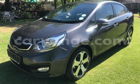 Buy Used Kia Rio Brown Car in Windhoek in Namibia