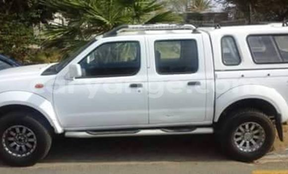 Buy Used Nissan Hardbody Black Car in Windhoek in Namibia