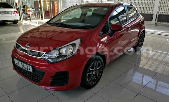Buy Used Kia Rio Red Car in Swakopmund in Namibia