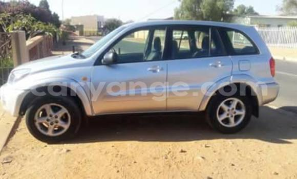 Buy Used Toyota RAV4 Black Car in Windhoek in Namibia