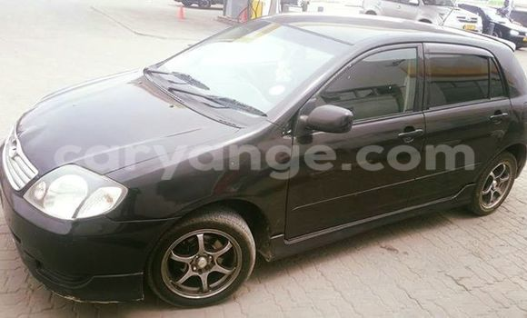 Buy Used Toyota Runx Black Car in Windhoek in Namibia