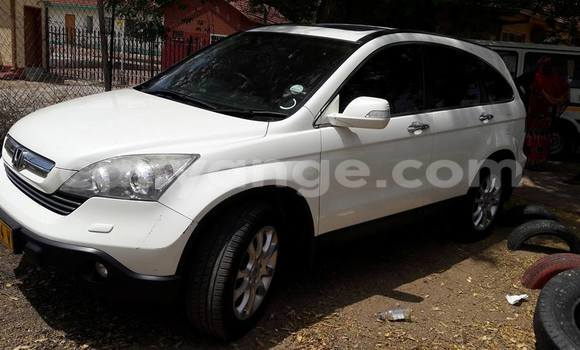 Buy Used Honda CR–V White Car in Windhoek in Namibia
