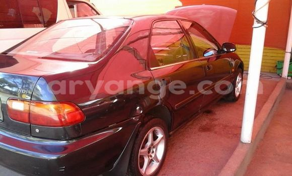 Buy Used Honda Civic Black Car in Windhoek in Namibia