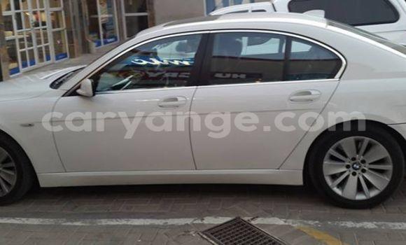 Buy Used BMW 5–Series White Car in Windhoek in Namibia