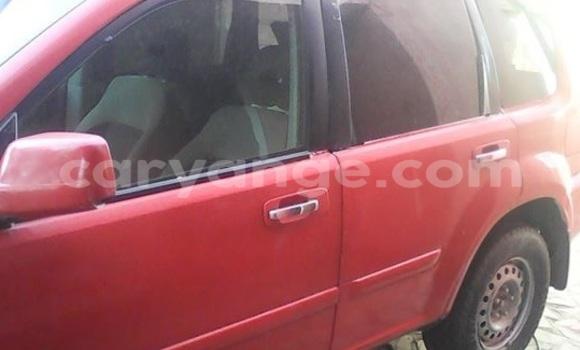 Buy Used Nissan X–Trail Red Car in Windhoek in Namibia