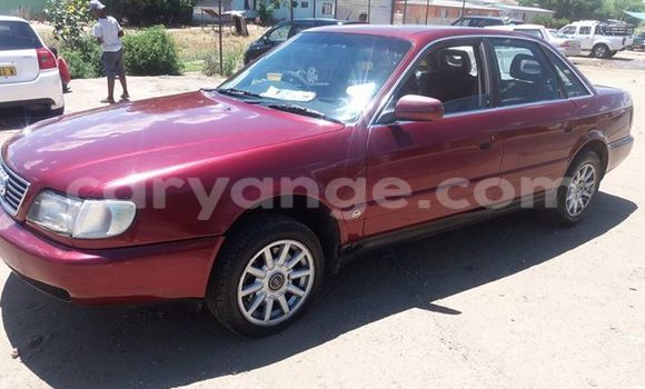 Buy Used Audi A6 Red Car in Windhoek in Namibia