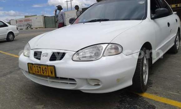 Buy Used Hyundai Elantra White Car in Windhoek in Namibia