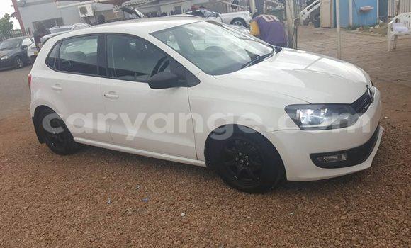 Buy Used Volkswagen Polo White Car in Windhoek in Namibia