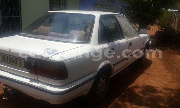 Buy Used Toyota Corolla White Car in Windhoek in Namibia
