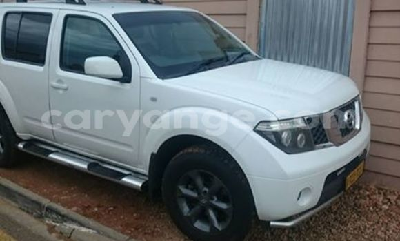 Buy Used Nissan Pathfinder White Car in Windhoek in Namibia