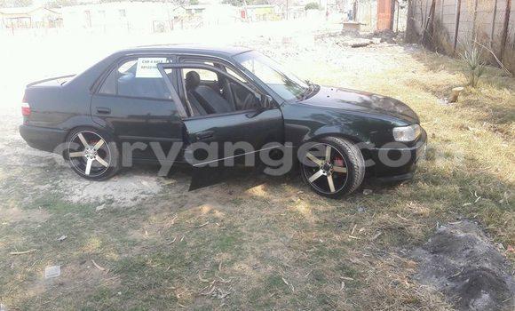 Buy Used Honda Accord Black Car in Windhoek in Namibia