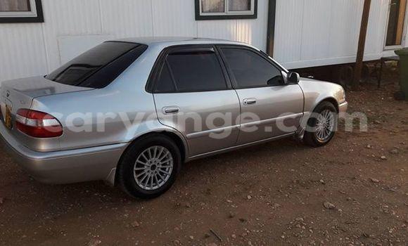 Buy Used Toyota Corolla Silver Car in Windhoek in Namibia