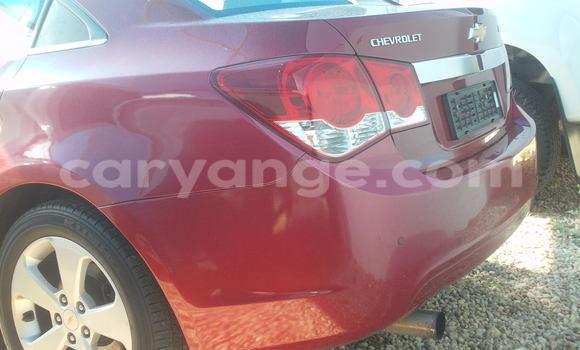 Buy Used Chevrolet Camaro Red Car in Windhoek in Namibia