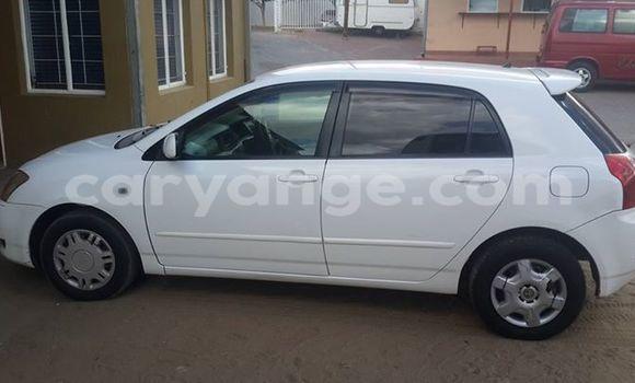 Buy Used Toyota Runx White Car in Windhoek in Namibia