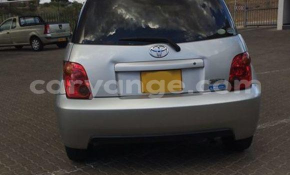 Buy Used Toyota IST White Car in Windhoek in Namibia