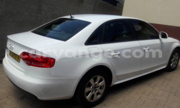 Buy Used Audi A4 White Car in Windhoek in Namibia