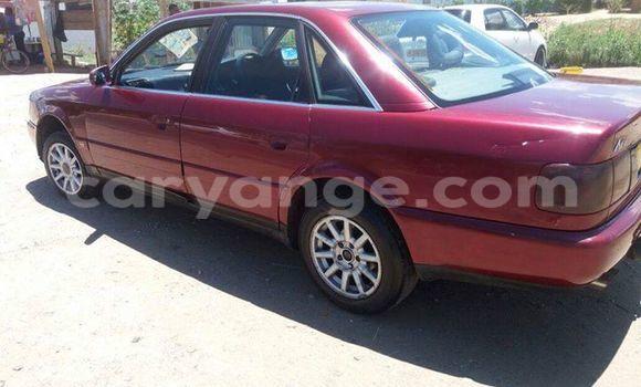 Buy Used Audi A6 Red Car in Windhoek in Namibia