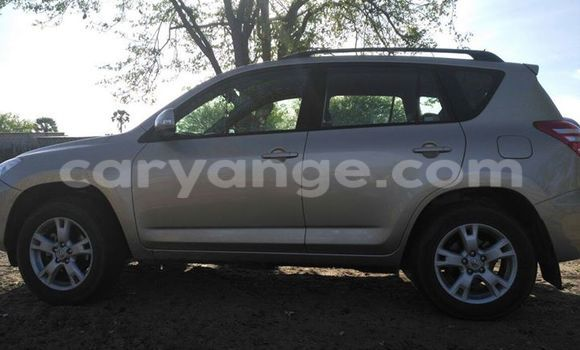 Buy Used Toyota RAV4 Silver Car in Windhoek in Namibia