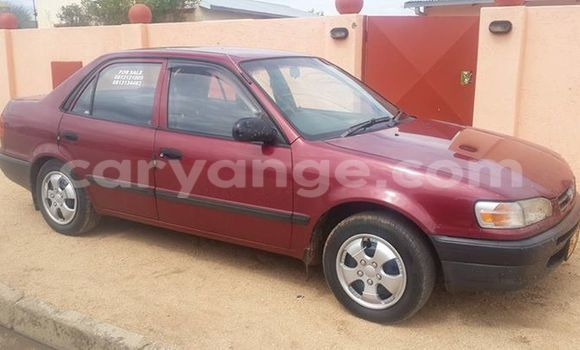 Buy Used Toyota Corolla Red Car in Windhoek in Namibia
