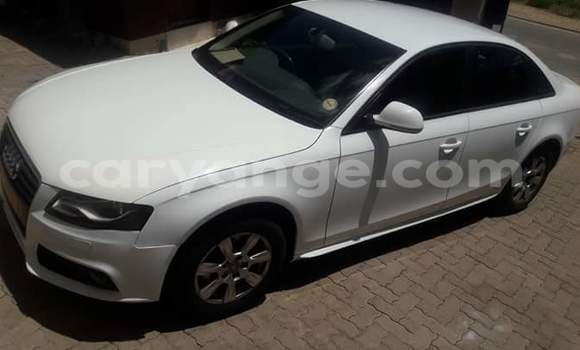 Buy Used Audi A4 White Car in Windhoek in Namibia