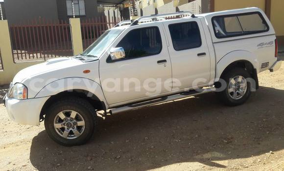 Buy Used Nissan Navara White Car in Windhoek in Namibia