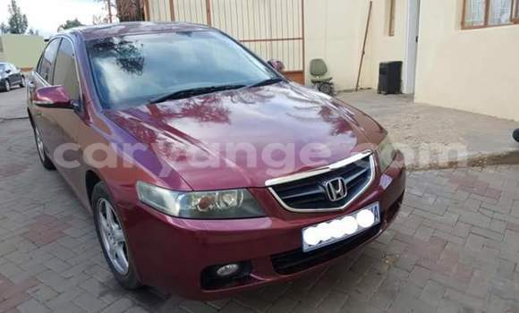 Buy Used Honda Accord Red Car in Windhoek in Namibia
