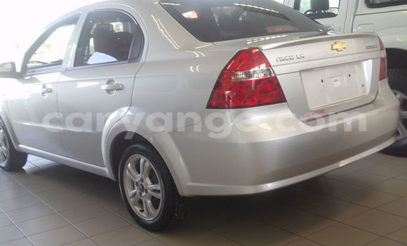 Buy New Chevrolet Camaro Other Car in Windhoek in Namibia
