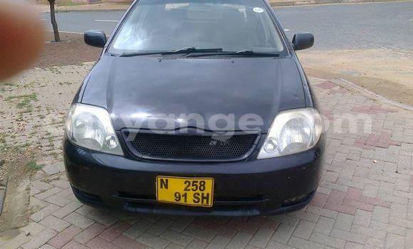 Buy Used Toyota Runx Black Car in Windhoek in Namibia