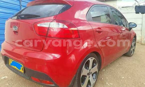 Buy Used Kia Rio Red Car in Windhoek in Namibia