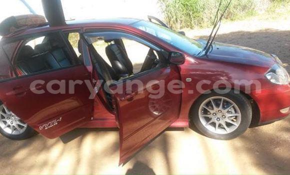 Buy Used Toyota Runx Red Car in Windhoek in Namibia