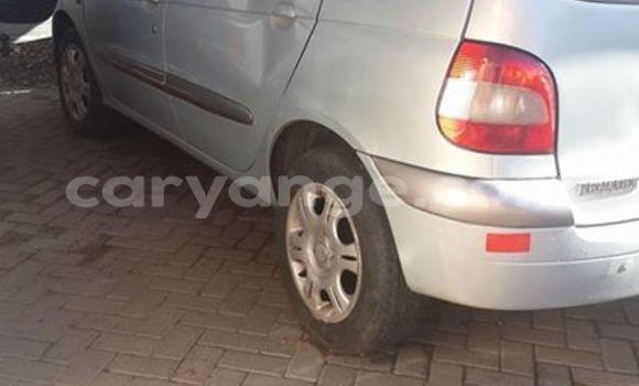 Buy Used Renault Scenic Silver Car in Windhoek in Namibia