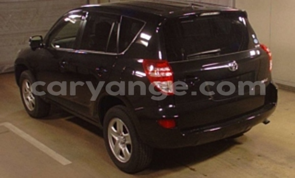Buy Used Toyota RAV4 Black Car in Windhoek in Namibia