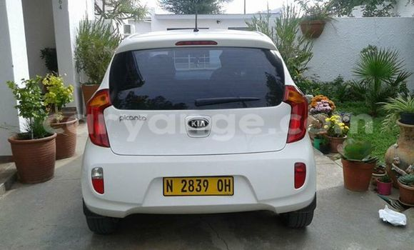 Buy Used Kia Picanto White Car in Windhoek in Namibia