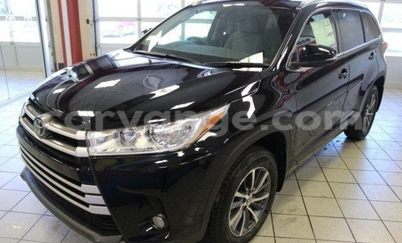 Buy New Toyota Highlander Black Car in Grootfontein in Namibia