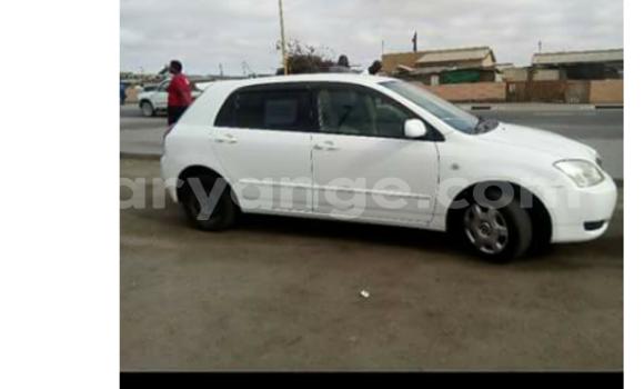 Buy New Toyota Runx White Car in Swakopmund in Namibia