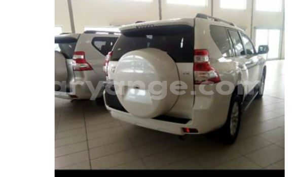 Buy New Toyota Prado Silver Car in Swakopmund in Namibia