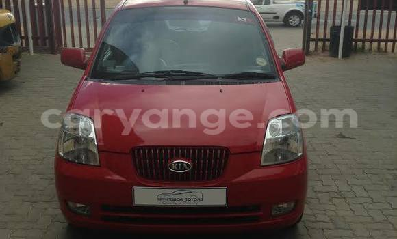 Buy Used Kia Picanto Red Car in Windhoek in Namibia