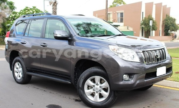Buy Used Toyota Land Cruiser Prado Other Car in Windhoek in Namibia