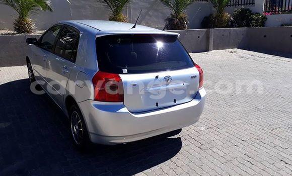 Buy Used Toyota Runx Silver Car in Windhoek in Namibia